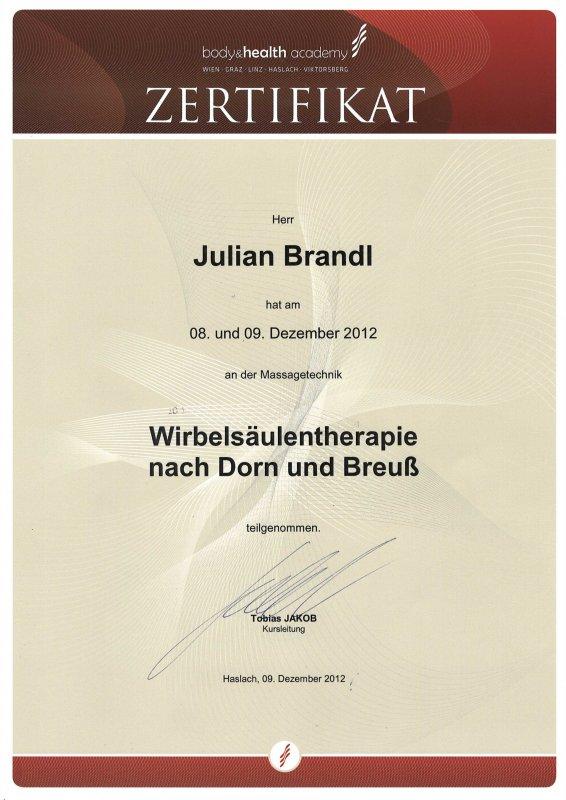 Juian Brandl: Wirbelsäulentherapie nach Dorn und Breuß