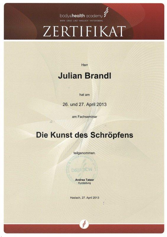 Juian Brandl: Schröpfen