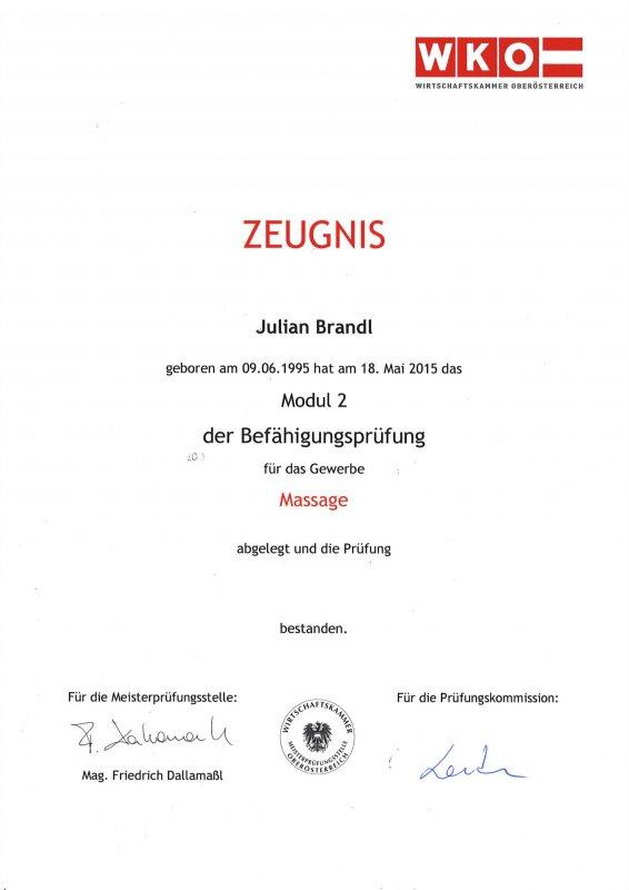 Juian Brandl: Befähigungsprüfung Gewerbe Massage Modul 2