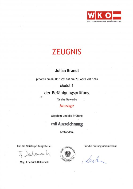 Juian Brandl: Befähigungsprüfung Gewerbe Massage Modul 1